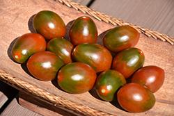 Chocolate Sprinkles Tomato (Solanum lycopersicum 'Chocolate Sprinkles') at Roger's Gardens