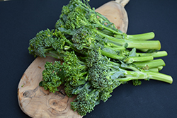 Atlantis Stem Broccoli (Brassica oleracea var. italica 'Atlantis') at Roger's Gardens