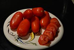 Health Kick Tomato (Solanum lycopersicum 'Health Kick') at Roger's Gardens